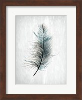 Framed Feathered Dreams 1