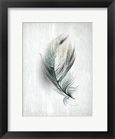 Framed Feathered Dreams 2