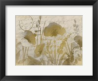 Framed Golden Poppies