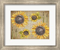 Framed Sunflower Day