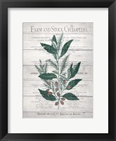 Framed Botanical A v2