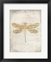 Framed Dragonfly Letters 2