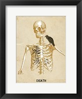 Framed Death