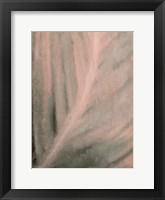 Framed Shaded Leaf 1