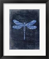 Framed Dragonfly Blue 1