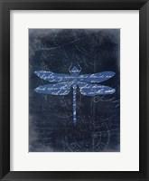Framed Dragonfly Blue 3