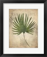 Framed Palms C