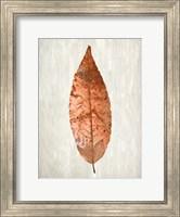 Framed Copper Leaves 1