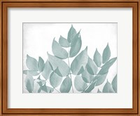 Framed Antiqued Leaves 1