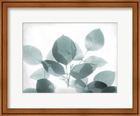 Framed Antiqued Leaves 2