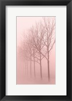 Framed Pink Dawn 1