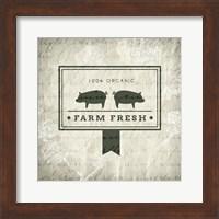 Framed Market 2