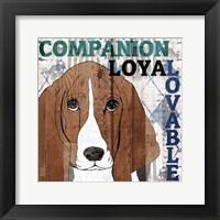 Framed Companion 1