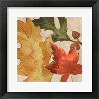 Framed Fall Leaves Square 1