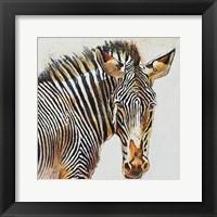 Framed Isolated Stripes