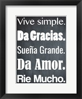 Framed Vive Simple 1