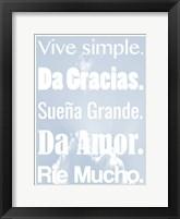 Framed Vive Simple 2