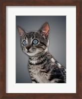 Framed Boundless Cuteness 1
