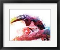 Framed Marvelous Tucan