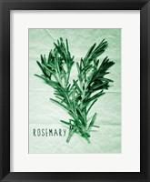 Framed Rosemary Paper Scraps