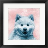 Framed Husky Splat