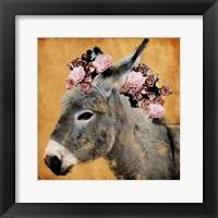 Framed Pretty Donkey