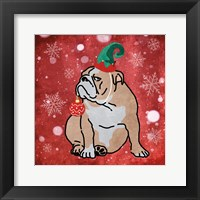 Framed Merry Bulldog