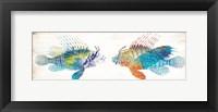 Framed Fish Kiss
