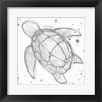 Framed Minimal Sketch Turtle Grey