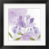 Framed Purple Delight 1