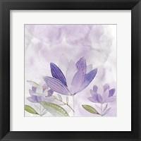 Framed Purple Delight 2
