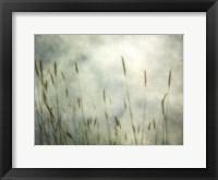 Framed Dune Grass 2