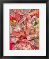 Framed Floral Maze