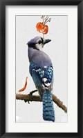 Framed Flowering Blue Jay