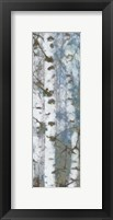 Framed Birch Scape 3