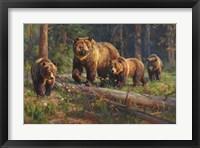 Framed Wilderness Matriarch