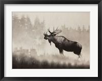 Framed Bull Moose
