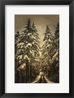 Framed Wagner Creek Snow