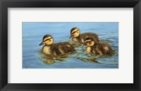 Framed Three Amigos