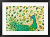 Framed Pretty Pretty Peacock