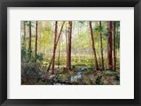 Framed Forest Edge