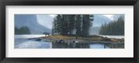 Framed Spirit Island Moose