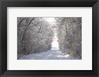 Framed Snow Covered I