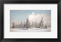 Framed Winter Frost