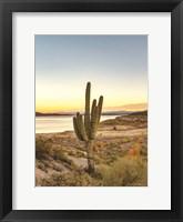 Framed Desert Cactus Sunset