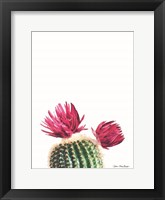 Framed Flowered Cactus