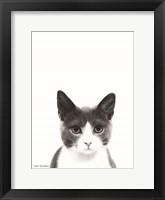 Framed Watercolor Cat