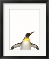 Framed Emperor Penguin
