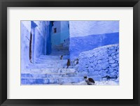 Framed Cats in an Alley, Chefchaouen, Morocco