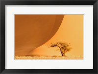 Framed Namib-Naukluft National Park, Namibia